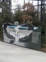 Zoo de Vincennes (398)
