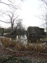 Zoo de Vincennes (410)