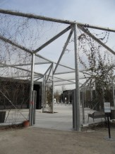 Zoo de Vincennes (422)