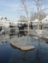 Zoo de Vincennes (59)