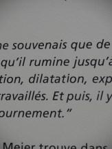 Muma - Le Havre (95)