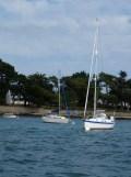 2. vers l'île d'Arz et retour (186)