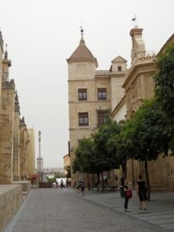 3.Catédral de Córdoba (13)