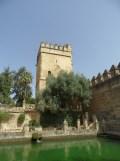 Alcázar de los Reyes Cristianos (11)