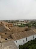 Alcázar de los Reyes Cristianos (171)