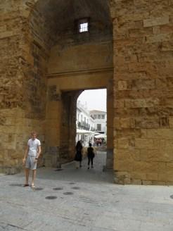 Alcázar de los Reyes Cristianos (200)
