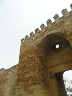 Alcázar de los Reyes Cristianos (201)