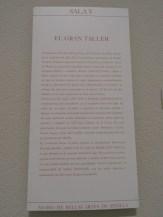 Museo de Bellas Artes (123)