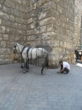 vers la Plaza de España (3)