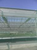 Centre Horticole de Paris (131)