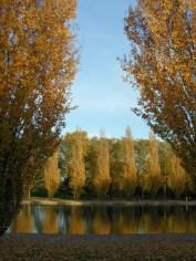 Parc de Sceaux (25)