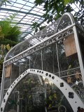 Jardin des serres d'Auteuil (114)