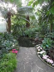 Jardin des serres d'Auteuil (90)