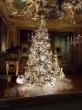 Noël à Vaux le Vicomte (59)