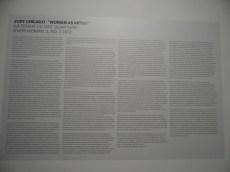Bordeaux - Musée d'Art Contemporain (32)