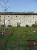Jardin des Plantes - Nantes et retour (33)