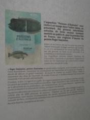 Musée d'histoire naturelle de Nantes (49)