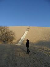 Dune de Pyla (5)