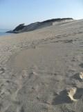 Dune de Pyla (83)
