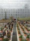 2. Jardins d'Orient (133)