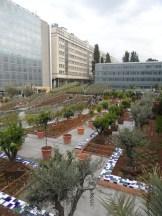 2. Jardins d'Orient (136)