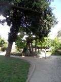 3. Quartier Latin (17)