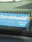 2-grindelwald-1