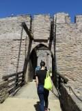 De Cap Fréhel à Fort La Latte (212)