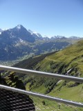 grindelwald-first-100