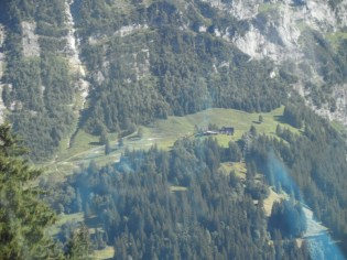 grindelwald-first-236