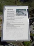 wilderswil-schynige-platte-199