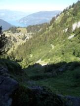 wilderswil-schynige-platte-85