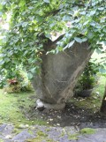 2-lauterbrunnen-146