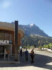 grindelwald-first-39