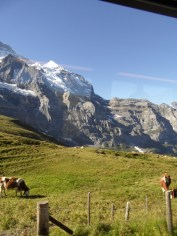 jungfraujoch-top-of-europe-40
