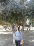 3. Autour de Nachlat Benyamin (25)