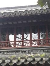Autour de Yuyuan (105)