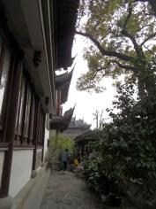 Autour de Yuyuan (144)