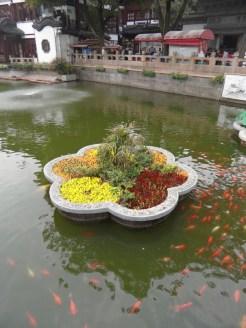 Autour de Yuyuan (59)