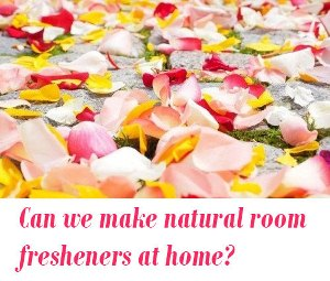 natural room fresheners at home