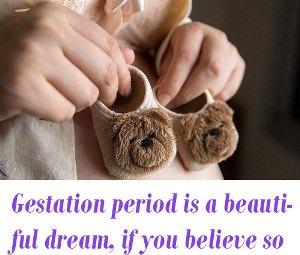 Gestation period