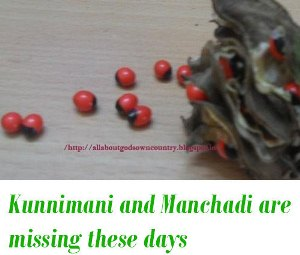 Kunnimani and manchadi