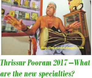 Thrissur Pooram 2017 specialties