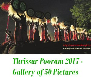 Thrissur Pooram 2018 Pictures