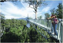 Tahune Air Walk | WorldMark South Pacific Club by Wyndham
