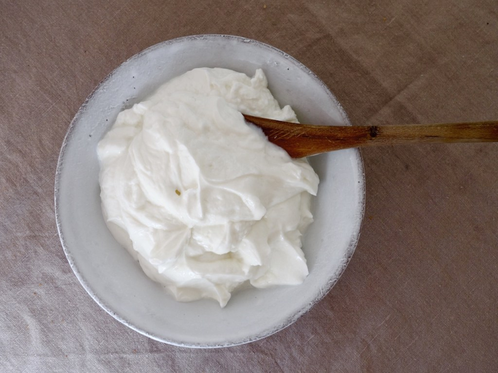 Skyr, ein isländisches Milchprodukt I