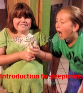 Introduction to sleepovers…… plan a mock one!