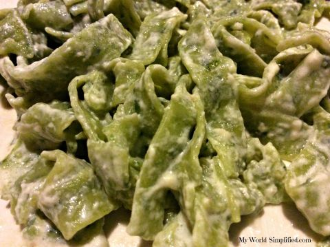 Spinach Fettuccine with Alfredo Sauce