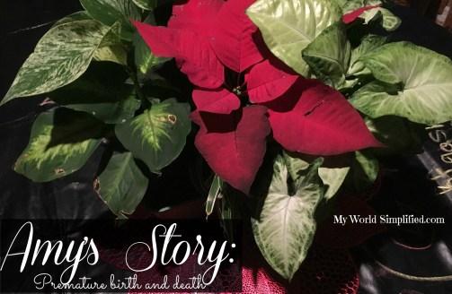 Amys story