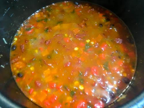 Chicken Tortilla Soup-2